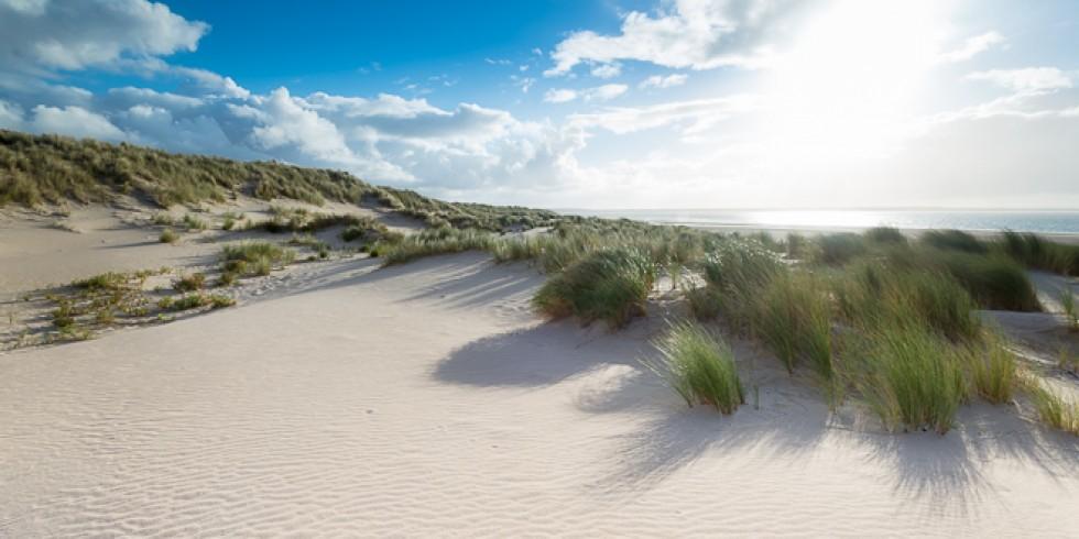 Report: Maasvlakte (2014-10-20)