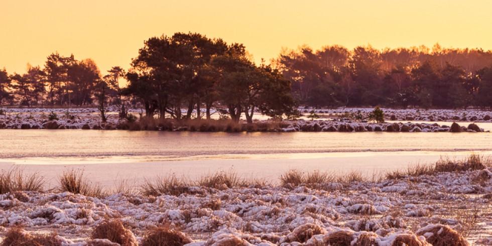 Report: Strabrechtse Heide (2014-12-28)